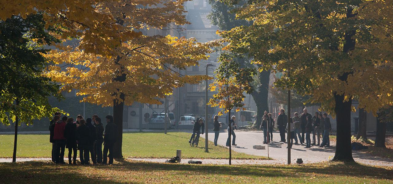 Studenten Herbst mdw