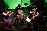 01_Haydn_Wettbewerb_20150304_Abel_Quartett.jpg