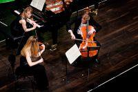 02_Haydn_Wettbewerb_20150304_Trio_Medici.jpg