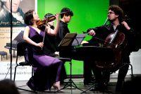 Haydn_Wettbewerb_20150224_Trio_Gaon_01.jpg