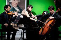 Haydn_Wettbewerb_20150226_Stefan_Zweig_Trio_02(1).jpg