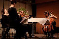 Quatuor Zaide_5 Copyright G. Spee.jpg