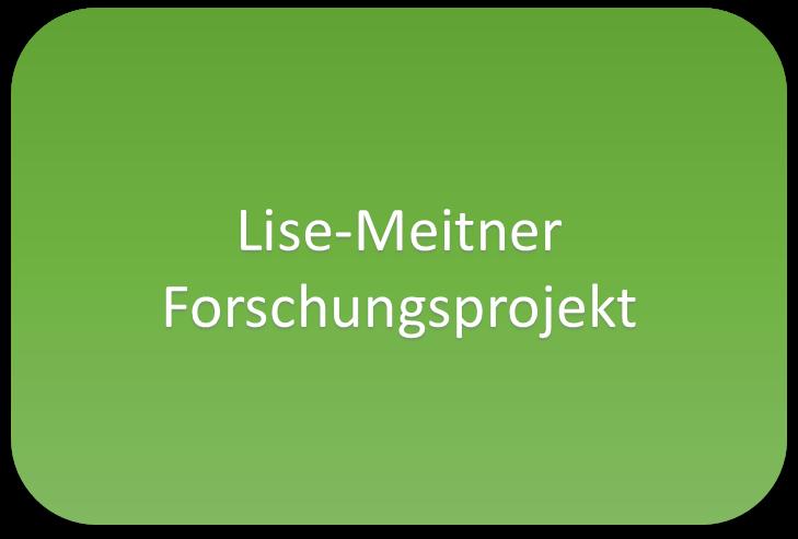 Lise-Meitner-Forschungprojekt