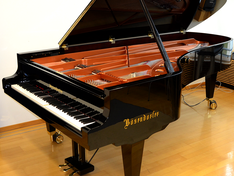 CEUS Computer Controlled Grand Piano