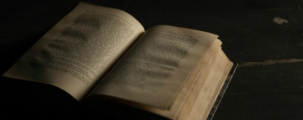 Buch und Dramaturgie