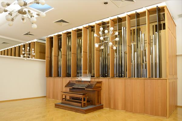 Rieger Orgel