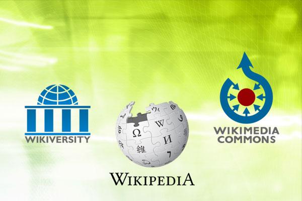 mdw Wiki Day